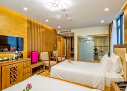 hotels in da nang vietnam deluxe twin room