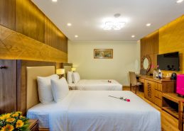 deluxe twin room best da nang accommodation