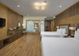 hotels in da nang vietnam deluxe king room